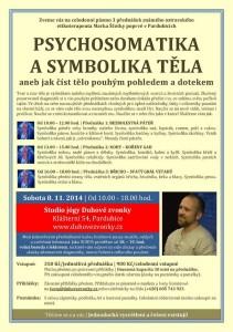 20141108_psychosomatika_Marek Scotka
